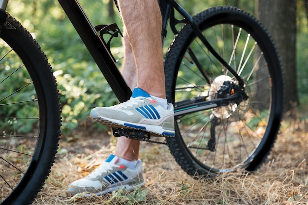 Cropped of bicycle in forest
