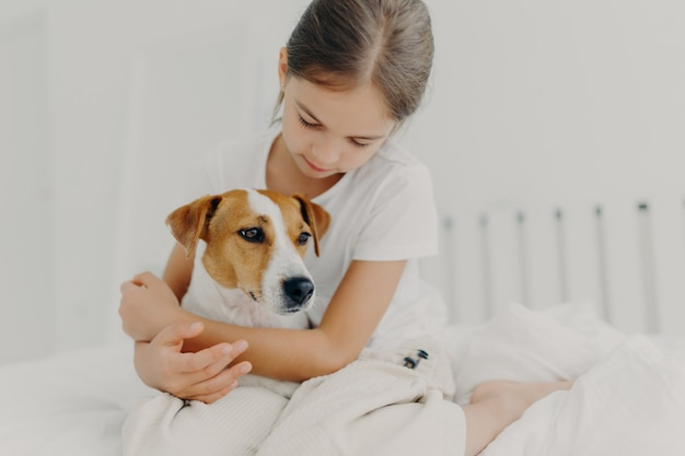 Cropped image of caring little girl in white t shirt, cuddles small pedigree dog, expresses big love to animal, poses on bed in white room, enjoys domestic atmosphere. child with favourite pet
