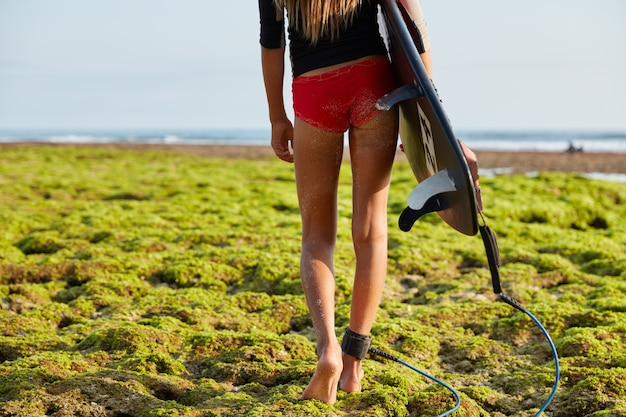 Cropped image of sporty woman with slender legs and sexual buttocks, walks on coastline covered with green vegetation, carries surfboard with legrope, ready for surfing. life saving concept.