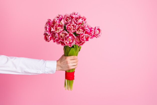 Of cropped man arm hold big bright tulips bunch