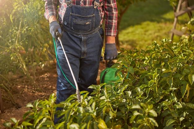 ジーンズのジャンプスーツを着て、タンクから彼の植物をスプレーしている農夫の男性のトリミングされた写真