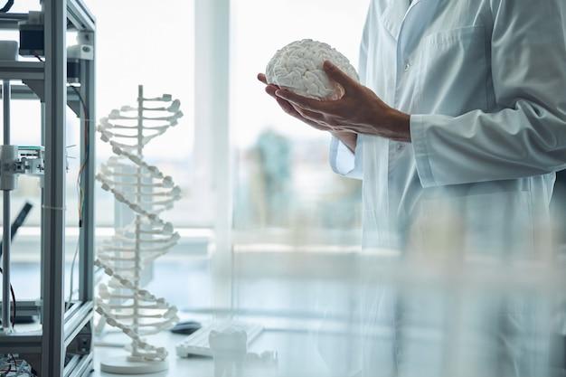 3d 프린팅 된 뇌 모델을 양손에 들고 의료 학생의 자른 사진