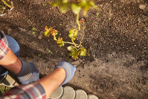 정원을 돌보며 작은 쇼울로 흙을 파는 사람의 자른 사진