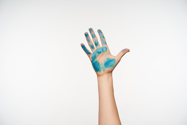 Cropped portrait of fair-skinned pretty woman's hand showing raised palm with blue paint on it, standing on white. human hands and signs concept