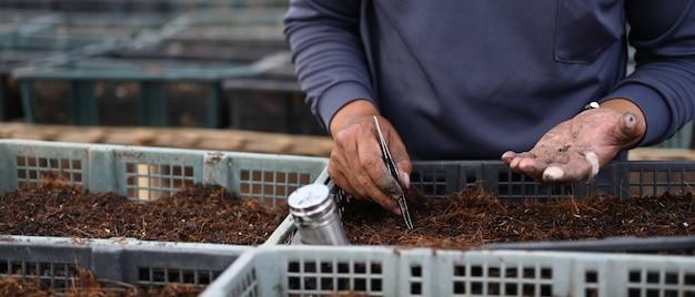 토양에 씨앗을 심는 집게를 사용하여 정원사의 자른 샷.