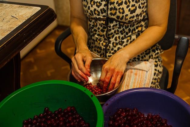 Foto di scorta ritagliata di una donna anonima che denocciola le ciliegie in diverse ciotole dopo la raccolta. ciliegie snocciolate in ciotola blu. il bacino verde è per le ciliegie intere.