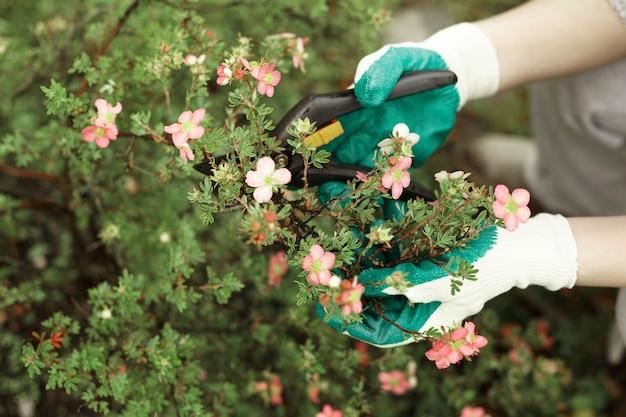 식물을 트리밍하는 동안 보호 장갑을 끼고 원예 작업자의 자른보기