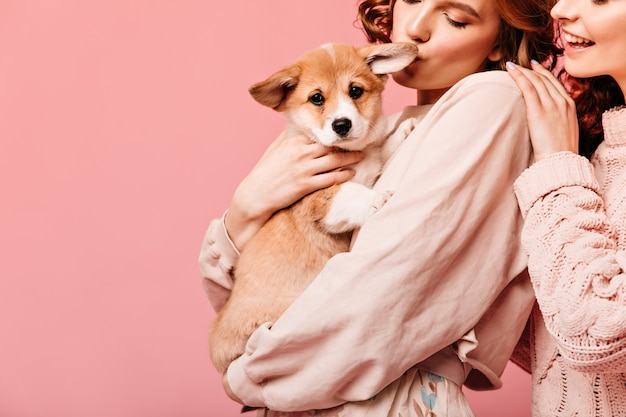 Cropped view of two girls holding dog. partial shot of charming ladies posing with puppy on pink background.