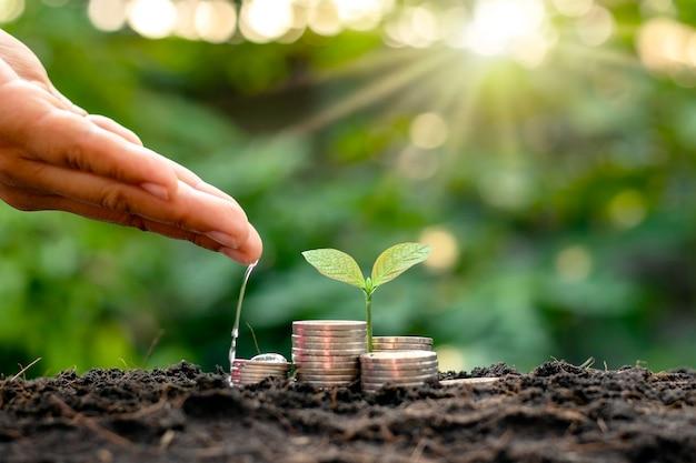 ビジネス、貯蓄、経済成長のための山のトリミング。