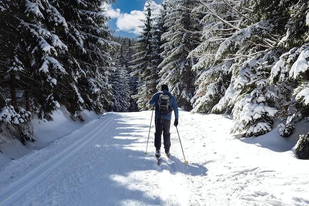 冬の雪に覆われた森でのクロスカントリースキー