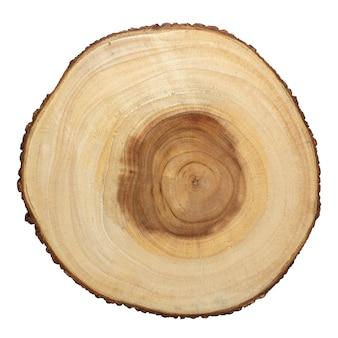 Текстура древесины поперечной резки с годичными кольцами и viens, изолированные на белом.