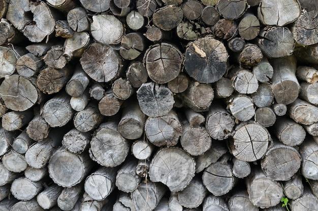木の幹パターンの断面、古い灰色の丸い木のカット