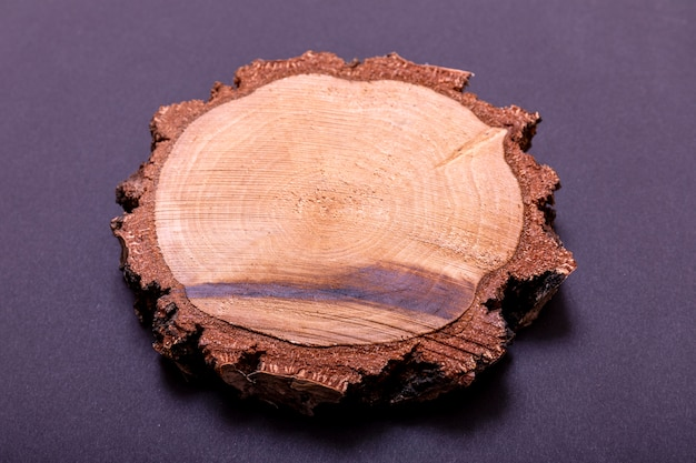 Cross section of tree stump isolated on black background