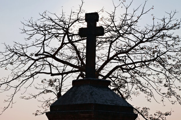 Cross and the tree