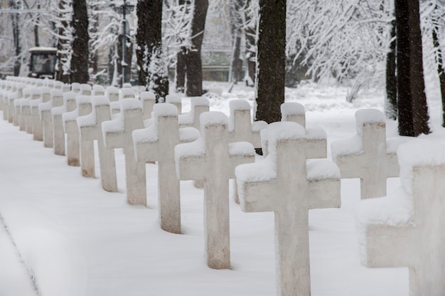 Crosses in the military cemetery are covered with fresh snow