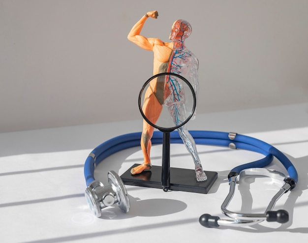 股間痛子宮と前立腺疾患の概念失禁インポテンス子宮機能障害