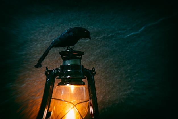 밤과 어둠에 오래 된 랜 턴 조명에 앉아 까마귀