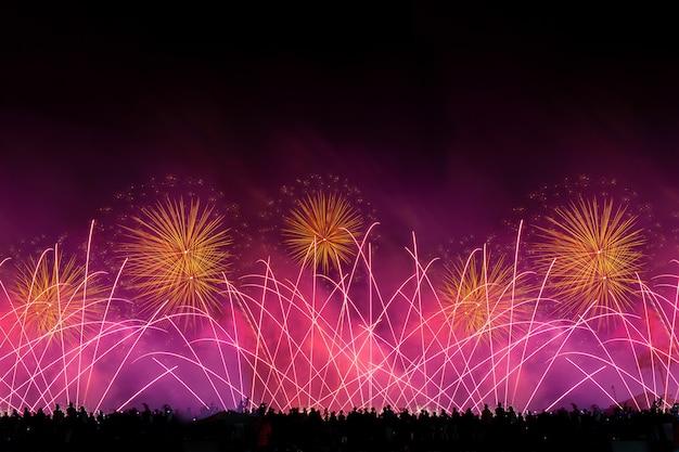 Толпа смотрит праздничный фейерверк в темном вечернем небе.