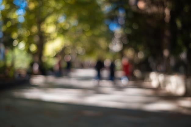 Толпа людей в городском природном парке.