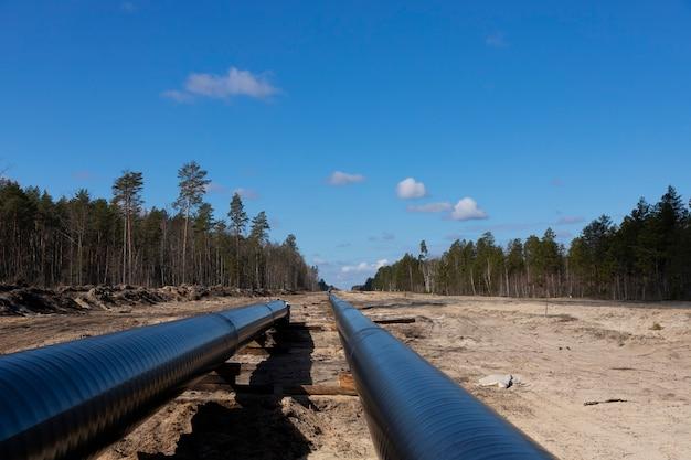 Работы по строительству трубопроводов для сырой нефти и природного газа в лесной зоне. нефтехимическая труба на деревянных опорах. монтаж и строительство газопровода для транспортировки газа на завод спг.