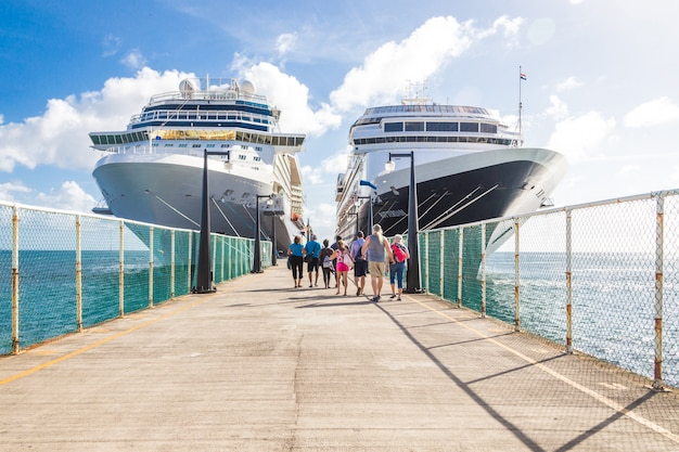 Cruise passengers return to cruise liner