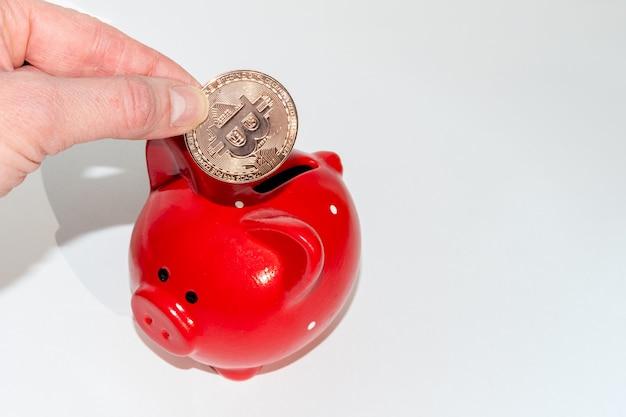 Cryptocurrency 저축 개념입니다. 손에는 흰색 배경에 있는 빨간 돼지 저금통 위에 비트코인 동전이 있습니다. 새로운 금융 시스템. 전자 디지털 화폐의 축적 개념입니다.