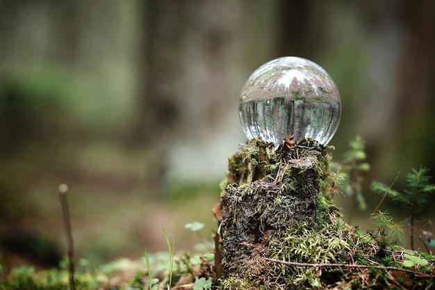 Хрустальный шар. волшебный аксессуар в лесу на пне. ритуальный шар ведьм и колдунов на старом гнилом пне, покрытом мхом.