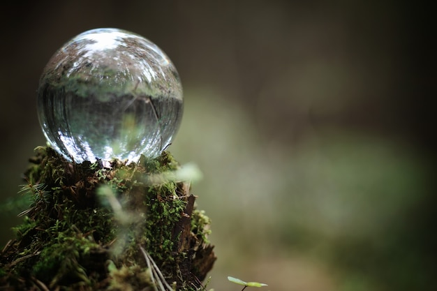 수정 구슬. 그루터기에 숲속의 마법의 액세서리. 이끼로 덮인 오래된 썩은 그루터기에 마녀와 마법사의 의식 공.