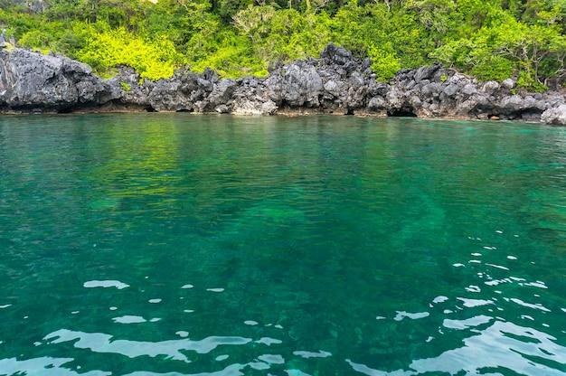 フィリピンのパラワンのラグーンにある透き通ったターコイズブルーの水