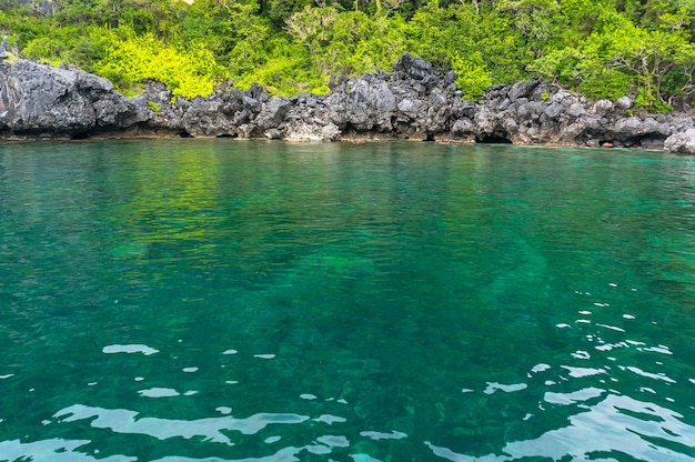 Crystal clear turquoise water in the lagoon at palawan philippines