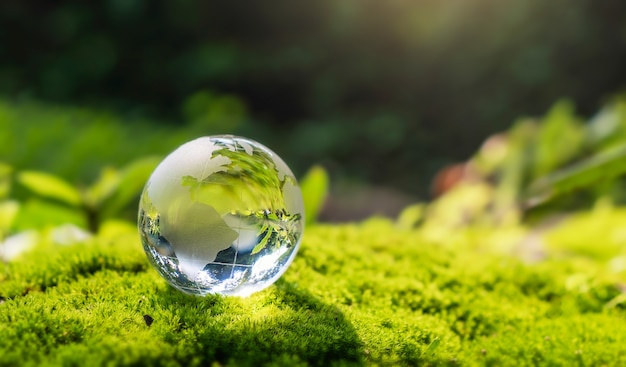 Crystal globe glass resting on moss stone with sunshine in nature forset. eco  environment concept