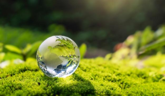 자연에서 햇빛과 이끼 돌에 쉬고 크리스탈 글로브 유리 forset. 에코 환경 개념