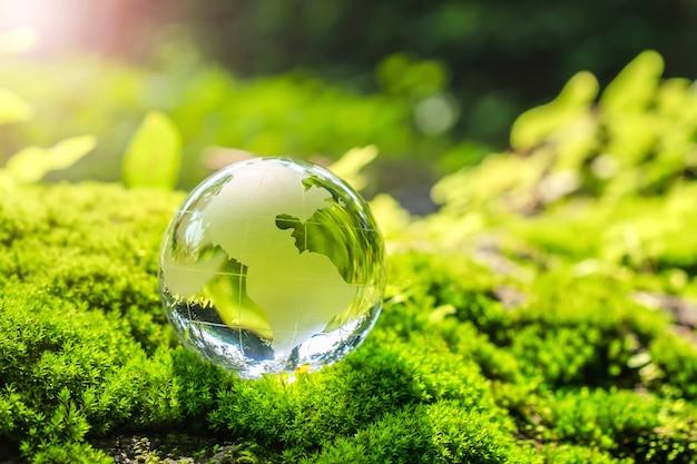 Хрустальный шар, покоящийся на моховом камне с солнечным светом в природе. экологическая концепция окружающей среды