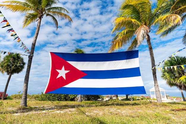 Cuban flag among palm trees. beautiful tropical landscape on the background. cuban flag against tropical palm trees and blue sky.