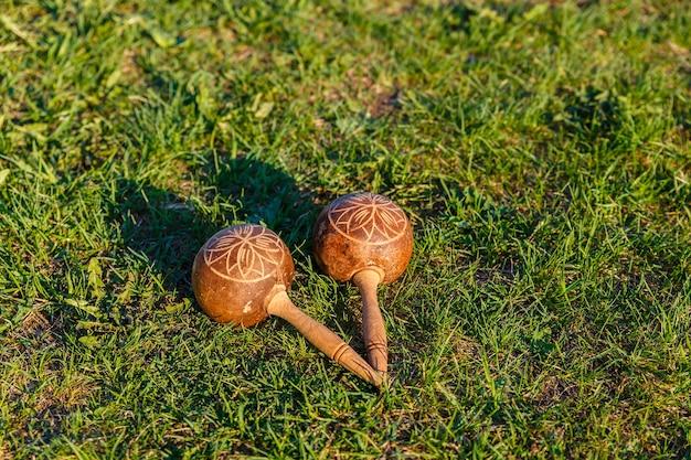 Cuban maracas on the green grass. traditional musical instrument made of natural materials.