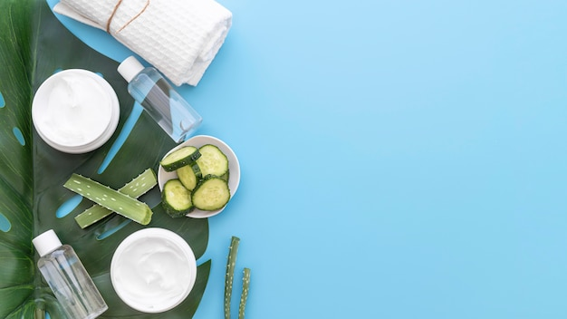 Cucumber and cleansing disks with copy-space