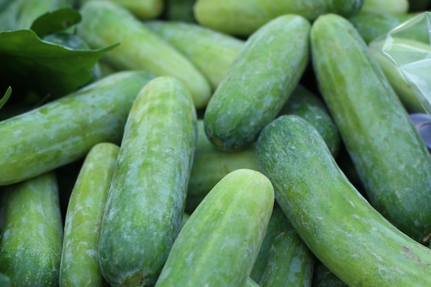 Cucumber at the market