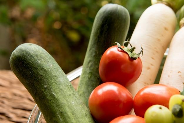 Cucumber,tomato,radish and indian gooseberry on nature background.