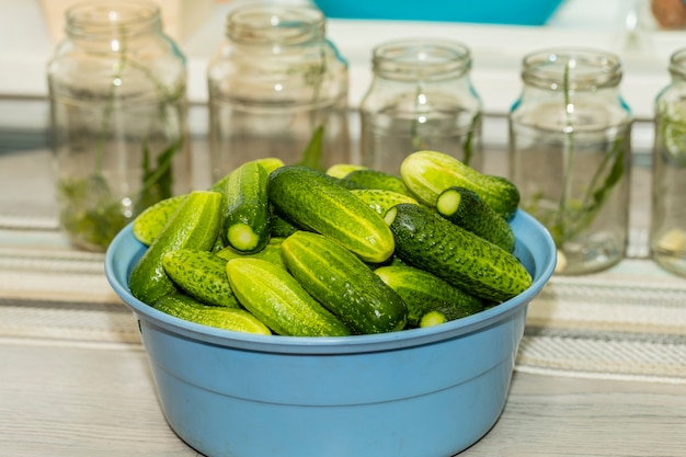 Cucumbers in a bowl are prepared for subsequent preservation in glass jars.