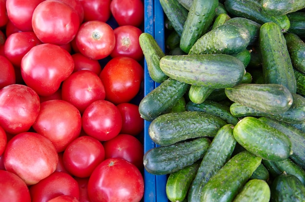 Cucumbers and tomatoes on the market for sale
