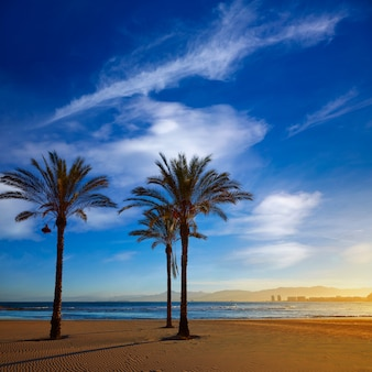 Cullera playa los olivos beach sunset in valencia
