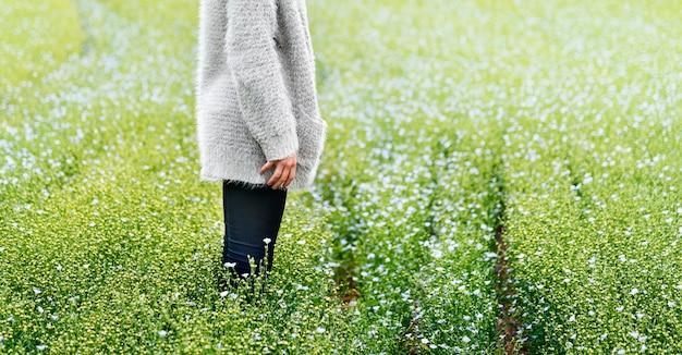 Cultivate garden nature seasonal growth concept