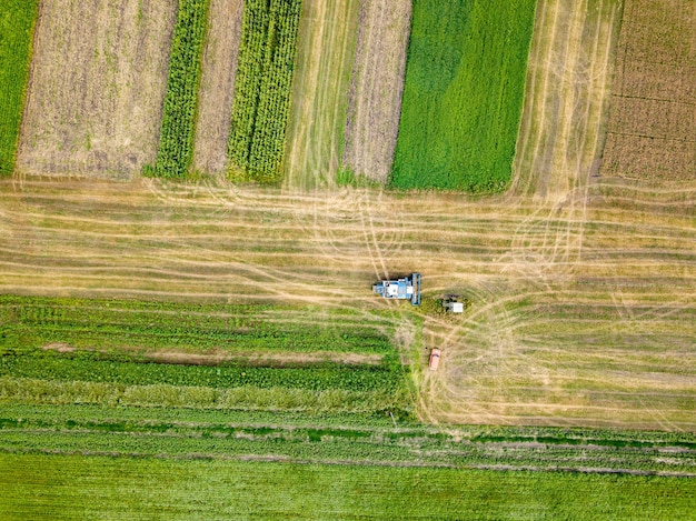 Cultivation of the agricultural field after harvesting. preparation of soil for sowing of winter crops. aerial view from the drone of the field after harvest.