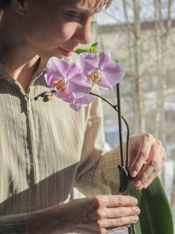 蘭の栽培。鉢植えのピンクの胡蝶蘭の植物を手に持って、彼女の保育園で幸せな若い花屋を笑顔。