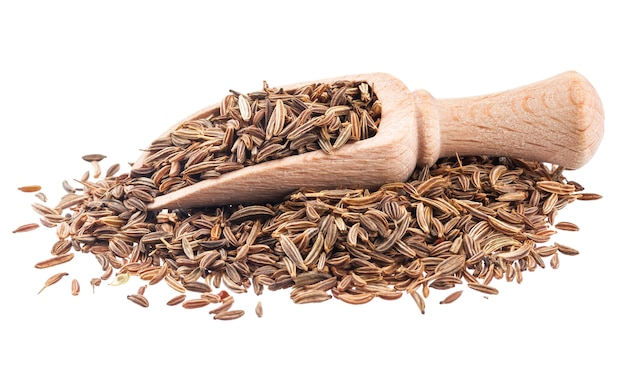 Cumin or caraway seeds in scoop isolated on white