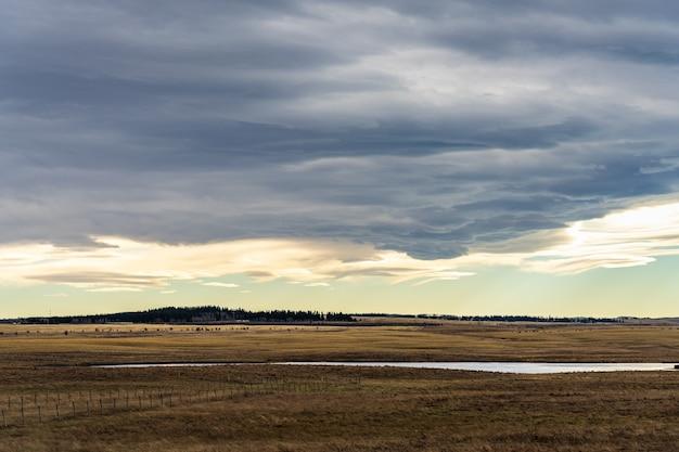 田舎の牧場の大草原の積乱雲。