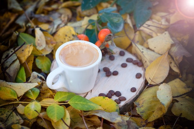Cup of coffee among the yellow fallen leaves in the sunlight,