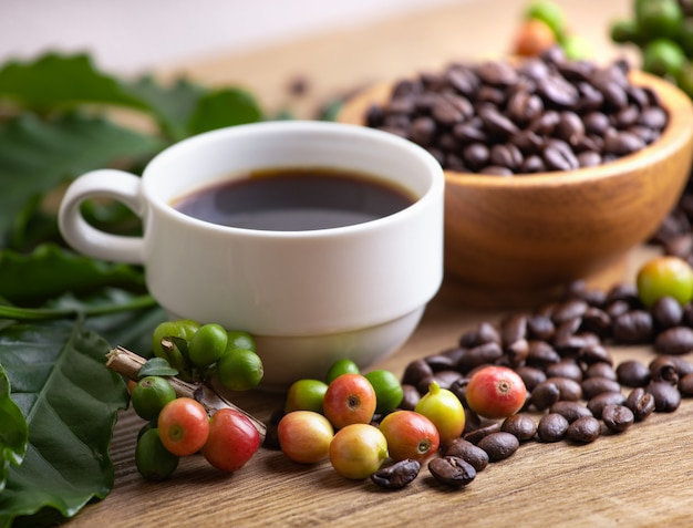 Cup of coffee beans with smoke and leaf