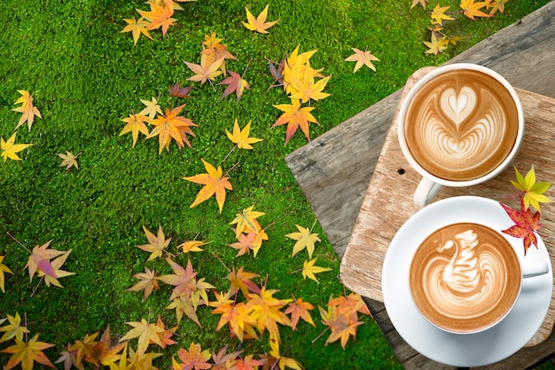 Cup of coffee latte and coffee bean fall on old bark with maple leaves in the moss garden