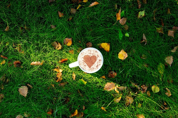 Cup of coffee with heart shape on green grass with autumn leaves